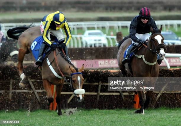Master Red ridden by Jason Maguire and Rainbow Peak ridden by Denis O'Regan in action in the David Merry Farrier Novices' Hurdle during the...