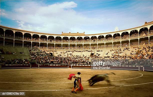 Matador facing off with bull, blurred motion