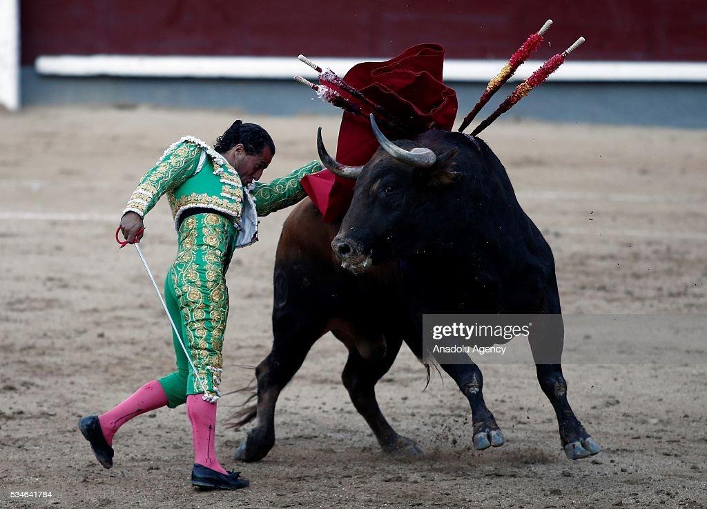 Matador Ivan Fandino performs a pass to a bull during a bullfight, organized with attendance of the matadors Juan Jose Padilla and Jose Garrido at Las Ventas bullring in Madrid, Spain on May 26, 2016.