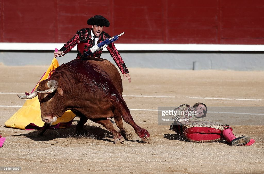 Matador Juan Jose Padilla (R) is injured by a bull during a bullfight, organized with attendance of the matadors Ivan Fandino and Jose Garrido at Las Ventas bullring in Madrid, Spain on May 26, 2016.