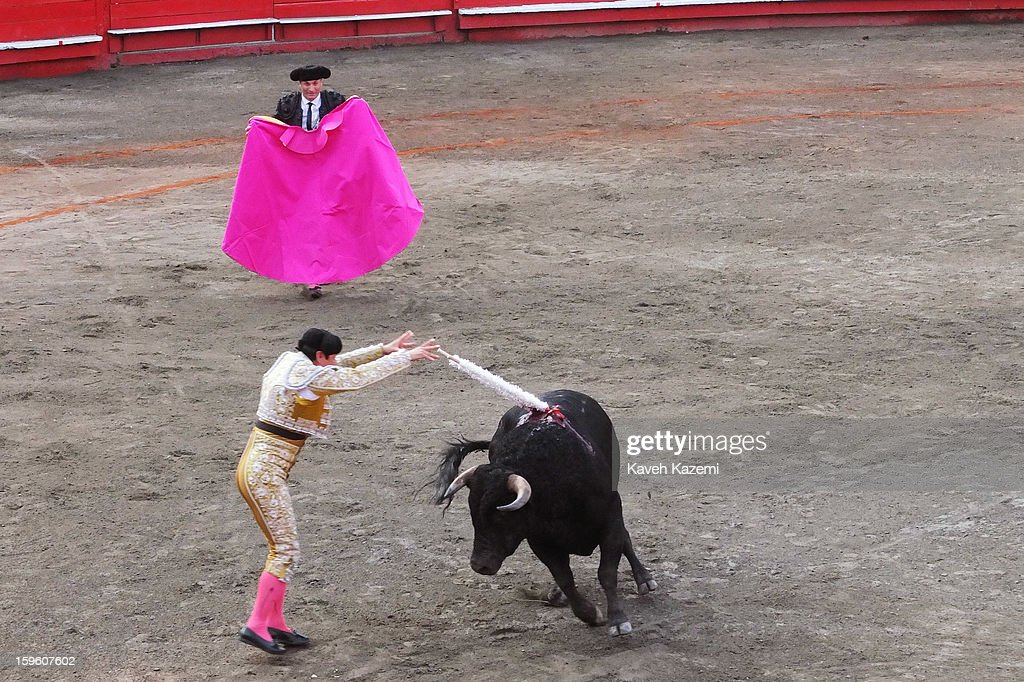 A matador's assistant known as picador hits the bull with 'banderilleros' before the fight begins during the annual fair on January 11, 2013 in Manizales, Colombia. The festival, is hosted in the city of Manizales in Colombia's central coffee region. Starting out as a trade fair, it has grown over the years to become one of Colombia's most important annual events.