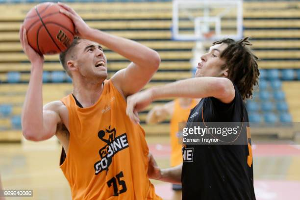 Mate Colina is guarded by Mitchell Newton during the NBL Combine 2017/18 at Melbourne Sports and Aquatic Centre on April 18 2017 in Melbourne...