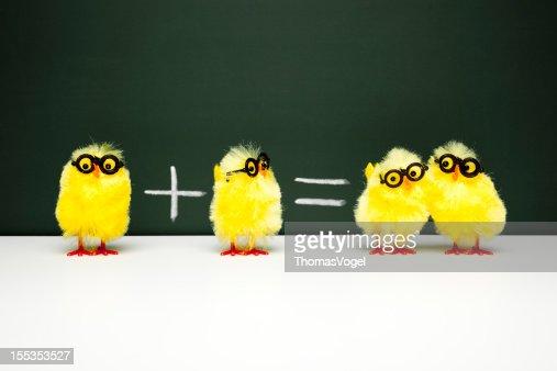 Math Lesson - Nerd  Chick Chicken Humor Fun Mathematics Easter