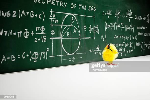 Mathematiker-Nerd Ostern Chick Huhn Humor lustige Mathematikstunde Bildung