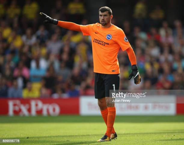 Mathew Ryan of Brighton gives instructions during the Premier League match between Watford and Brighton and Hove Albion at Vicarage Road on August 26...