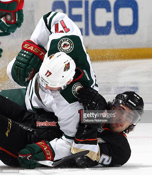 Mathieu Perreault of the Anaheim Ducks gets tangled up on the ice with Torrey Mitchell of the Minnesota Wild on January 28 2014 at Honda Center in...