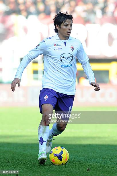 Matias Fernandez of ACF Fiorentina in action during the Serie A match between Torino FC and ACF Fiorentina at Stadio Olimpico di Torino on January 12...