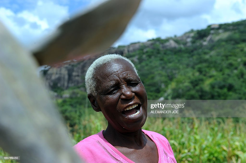 Matilda Mahlatini, 76, talks on March 15, 2013 in her village of Chinamhora, Zimbabwe. Mahlatini will not be joining hundreds of thousands of Zimbabweans voting in a referendum on March 16 on whether to adopt a new charter to pave way for new elections and a possible end to a shaky power-sharing government. The widow who ekes a living on a small plot in Cheza village in Chinamhora, 60 kilometres north-east of Zimbabwe, says she only heard about the draft charter, has no knowledge about its contents and that her welfare takes priority over the vote. 'I will be chasing away the monkeys and baboons,' the grey-haired Mahlatini told AFP referring to the marauding animals that besiege fields in the village in search of fresh corn. 'If I go to vote all of my mealies will be eaten and what am I going to eat myself ?' Her only hope is that the vote will change things 'especially the economy.'