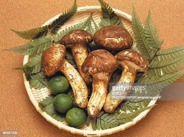 Matsutake mushroom and sudachi citrus