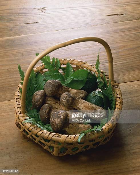 Matsutake mushrooms in Basket