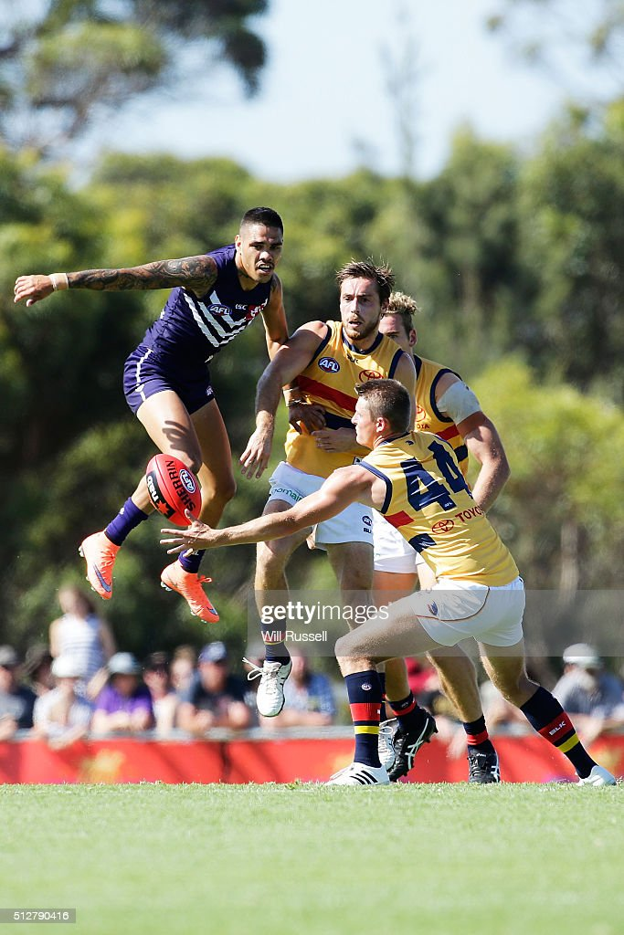 Matt Crouch of the Crows controls the ball during the 2016 AFL NAB Challenge match between the Fremantle Dockers and the Adelaide Crows at Sounness Park on February 28, 2016 in Perth, Australia.