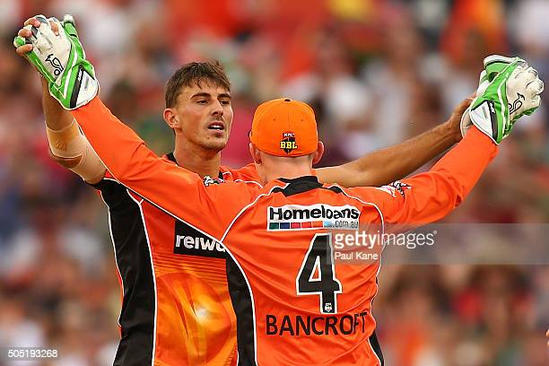 Matt Dixon and Cameron Bancroft of the Scorchers celebrate the wicket of Luke Wright of the Stars during the Big Bash League match between the Perth...