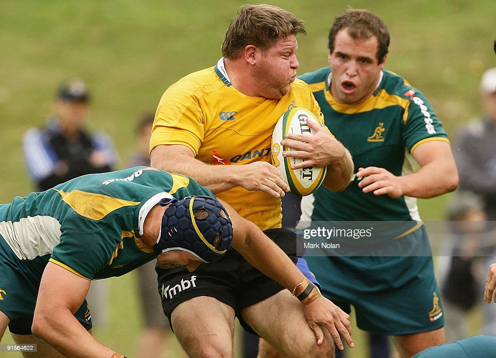 Wallabies Training Session