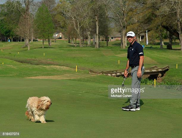 Matt Fast looks on as a dog crossing the third green interrupts his routine during the second round of the Chitimacha Louisiana Open presented by...