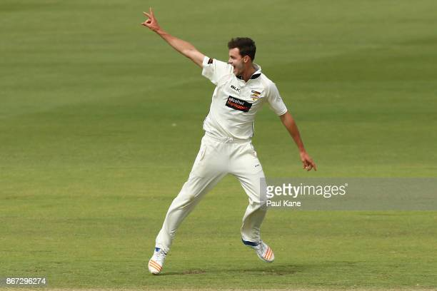 Matt Kelly of Western Australia appeals successfully for the wicket of Andrew Fekete of the Tigers during day three of the Sheffield Shield match...