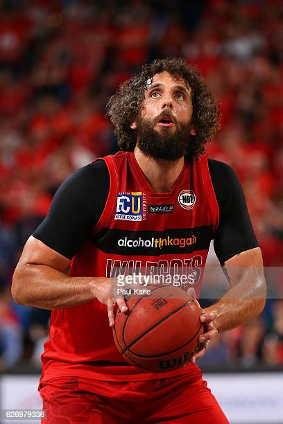 Matt Knight of the Wildcats shoots a free throw during the round nine NBL match between the Perth Wildcats and the Brisbane Bullets at Perth Arena on...
