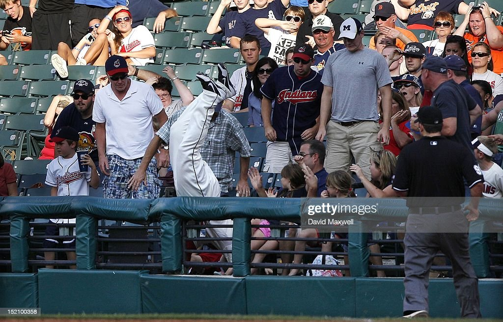 Matt LaPorta of the Cleveland Indians goes over the fence and into the crowd while chasing a foul ball hit by Omar Infante of the Detroit Tigers...