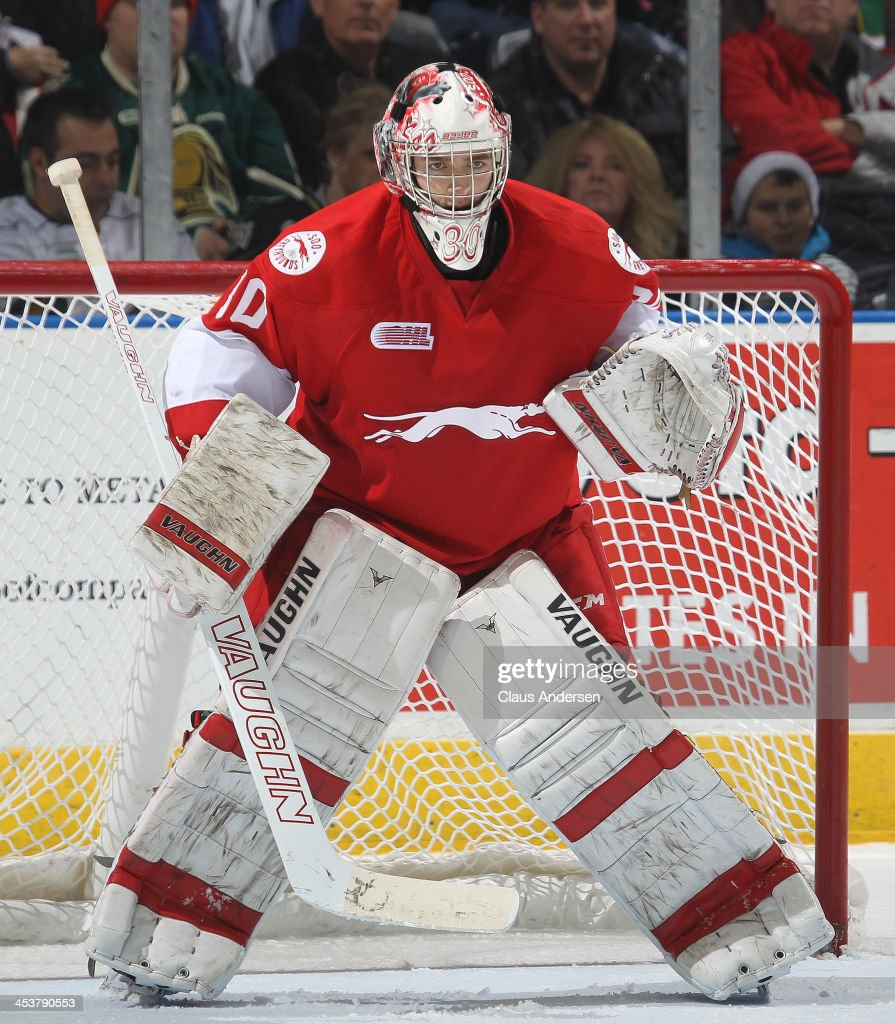 Matt Murray #30 of the Sault Ste. Marie Greyhounds watches for a shot against the London Knights during an OHL game at the Budweiser Gardens on December 4, 2013 in London, Ontario, Canada. The Knights defeated the Greyhounds 3-2.