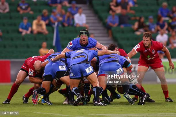 Matt Philip of the Force calls out during the round two Super Rugby match between the Western Force and the Reds at nib Stadium on March 2 2017 in...