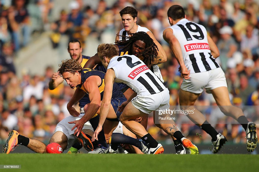 <a gi-track='captionPersonalityLinkClicked' href=/galleries/search?phrase=Matt+Priddis&family=editorial&specificpeople=4155904 ng-click='$event.stopPropagation()'>Matt Priddis</a> of the Eagles contests for the ball during the round six AFL match between the West Coast Eagles and the Collingwood Magpies at Domain Stadium on May 1, 2016 in Perth, Australia.