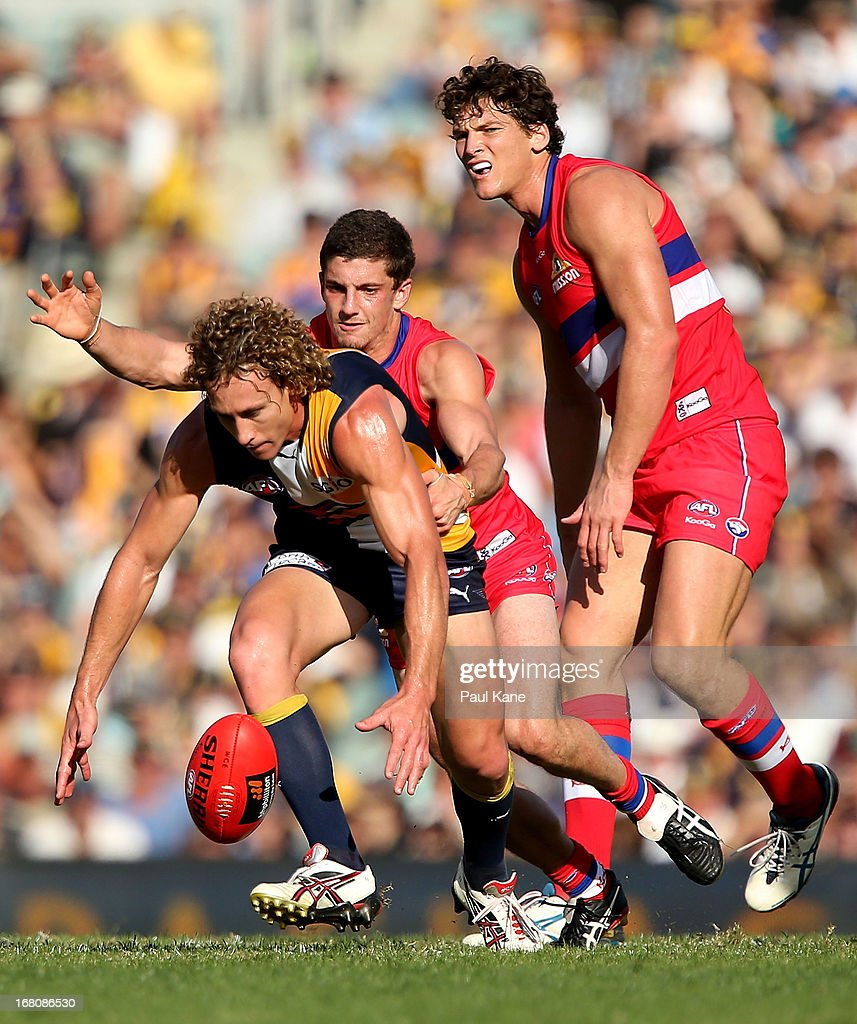 <a gi-track='captionPersonalityLinkClicked' href=/galleries/search?phrase=Matt+Priddis&family=editorial&specificpeople=4155904 ng-click='$event.stopPropagation()'>Matt Priddis</a> of the Eagles gathers the ball under pressure during the round six AFL match between the West Coast Eagles and the Western Bulldogs at Patersons Stadium on May 5, 2013 in Perth, Australia.