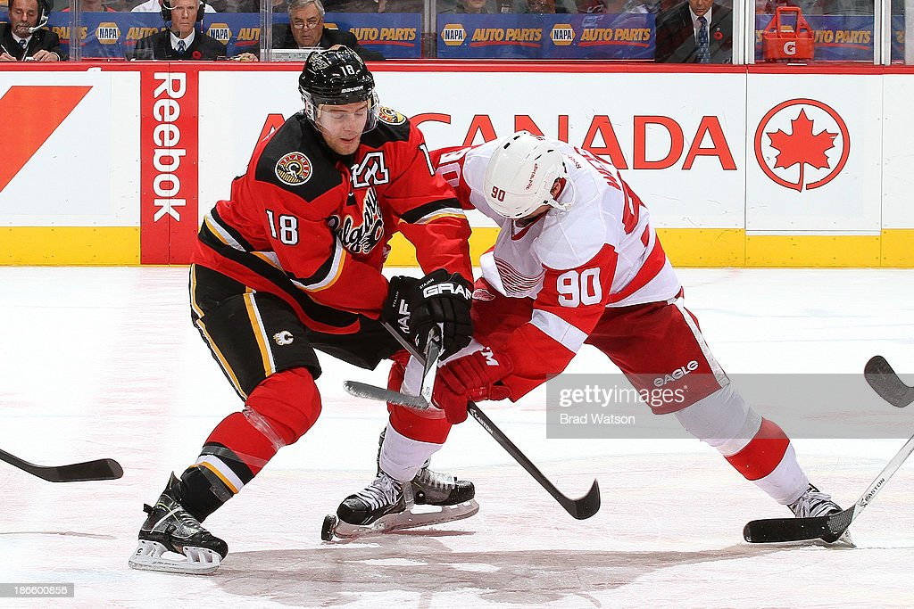 Matt Stajan #18 of the Calgary Flames faces off against Stephen Weiss #90 of the Detroit Red Wings at Scotiabank Saddledome on November 1, 2013 in Calgary, Alberta, Canada.