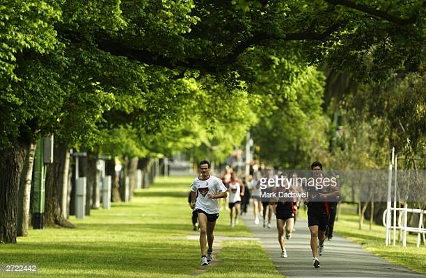 Matthew Allan and David Hille in action during the Essendon Football Clubs preseason training session at parkland on November 13 2003 at Optus Oval...