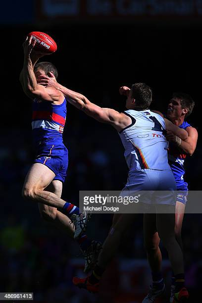 Matthew Boyd of the Bulldogs marks the ball during the round six AFL match between the Western Bulldogs and the Adelaide Crows at Etihad Stadium on...
