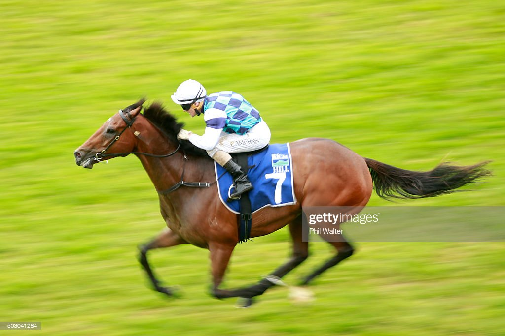 Matthew Cameron riding Hasselhoof wins the Rich Hill Mile at Ellerslie Racecourse on January 1 2016 in Auckland New Zealand