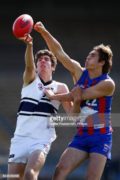 Matthew Harman of the Knights and Hugh Longbottom of the Chargers contest a hitout during the TAC Cup Final between Oakleigh and Northern Knights at...