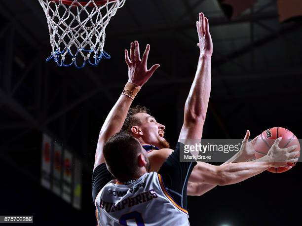 Matthew Hodgson of Adelaide and Isaac Humphries of Sydney Kings during the round seven NBL match between Adelaide 36ers and the Sydney Kings at...