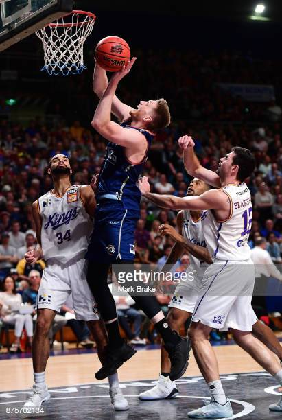 Matthew Hodgson of Adelaide during the round seven NBL match between Adelaide 36ers and the Sydney Kings at Titanium Security Arena on November 18...