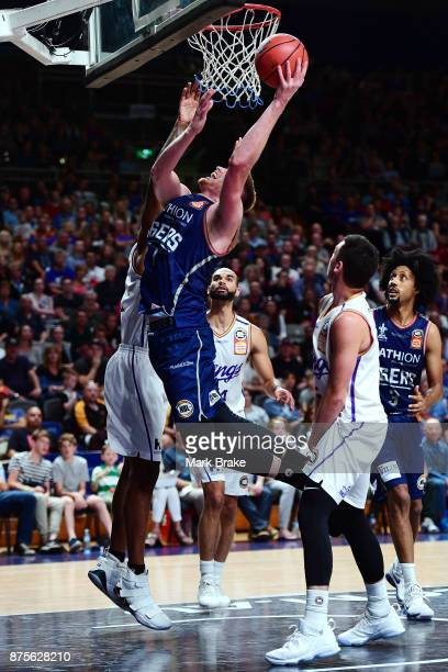 Matthew Hodgson of the 36ers during the round seven NBL match between Adelaide 36ers and the Sydney Kings at Titanium Security Arena on November 18...
