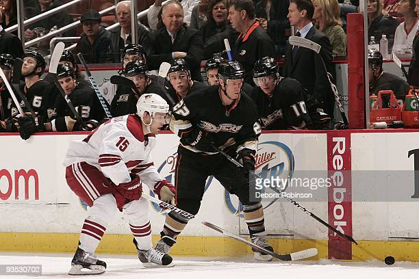 Matthew Lombardi of the Phoenix Coyotes reaches for the puck against Todd Marchant of the Anaheim Ducks during the game on November 29 2009 at Honda...