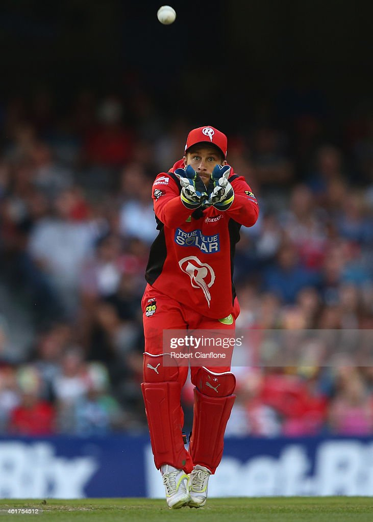 <a gi-track='captionPersonalityLinkClicked' href=/galleries/search?phrase=Matthew+Wade&family=editorial&specificpeople=724041 ng-click='$event.stopPropagation()'>Matthew Wade</a> of the Melbourne Renegades takes the ball during the Big Bash League match between the Melbourne Renegades and the Adelaide Strikers at Etihad Stadium on January 19, 2015 in Melbourne, Australia.