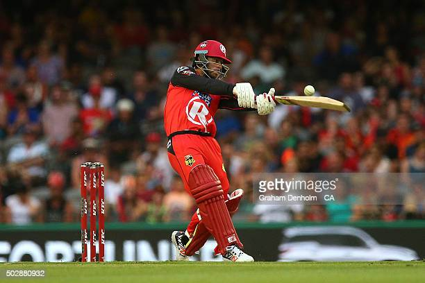 Matthew Wade of the Renegades plays a shot during the Big Bash League match between the Melbourne Renegades and the Perth Scorchers at Etihad Stadium...