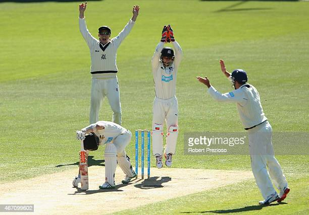 Matthew Wade of Victoria celebrates after taking a catch to dismiss Michael Klinger of Western Australia off the bowling of Fawad Ahmed of Victoria...