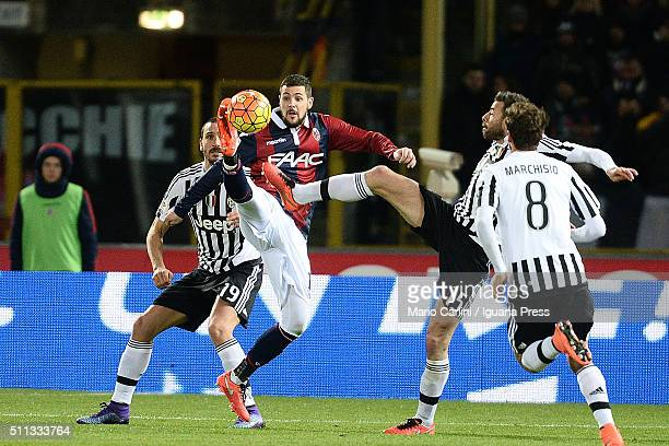 Mattia Destro of Bologna FC in ation during the Serie A match between Bologna FC and Juventus FC at Stadio Renato Dall'Ara on February 19 2016 in...