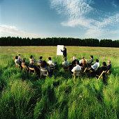 Mature businessman conducting presentation in field