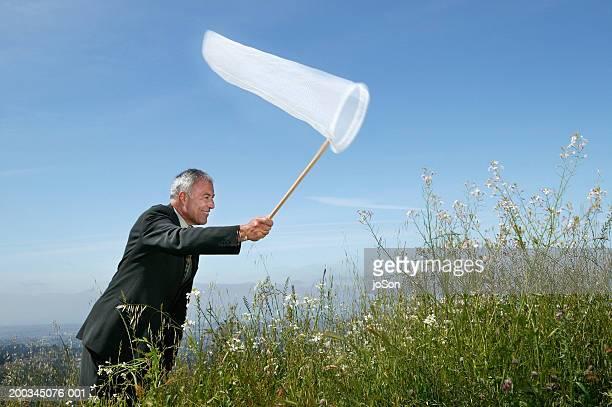 Mature businessman using butterfly net, side view