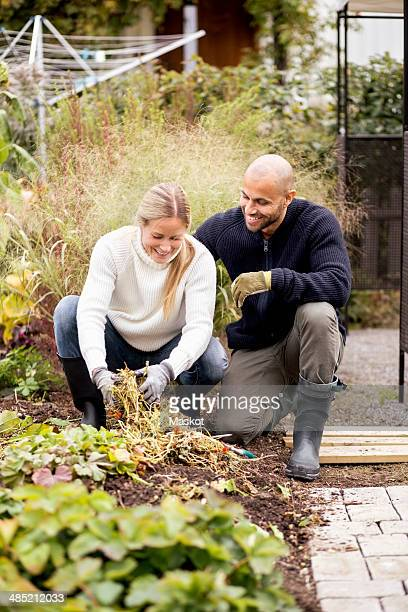 Mature couple gardening at yard