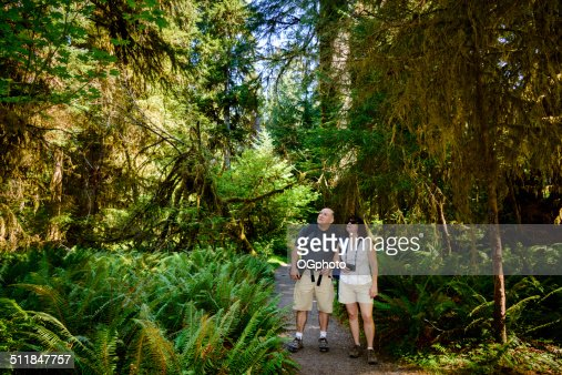 Mature couple hiking in the woods -XXXL : Stock Photo