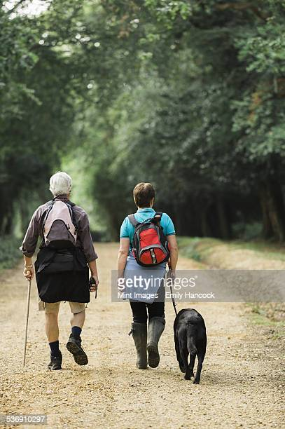 A mature couple hiking with their dog.