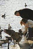 Mature couple looking at ducks in a pond