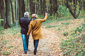Back view of beautiful mature couple walking in autumn park