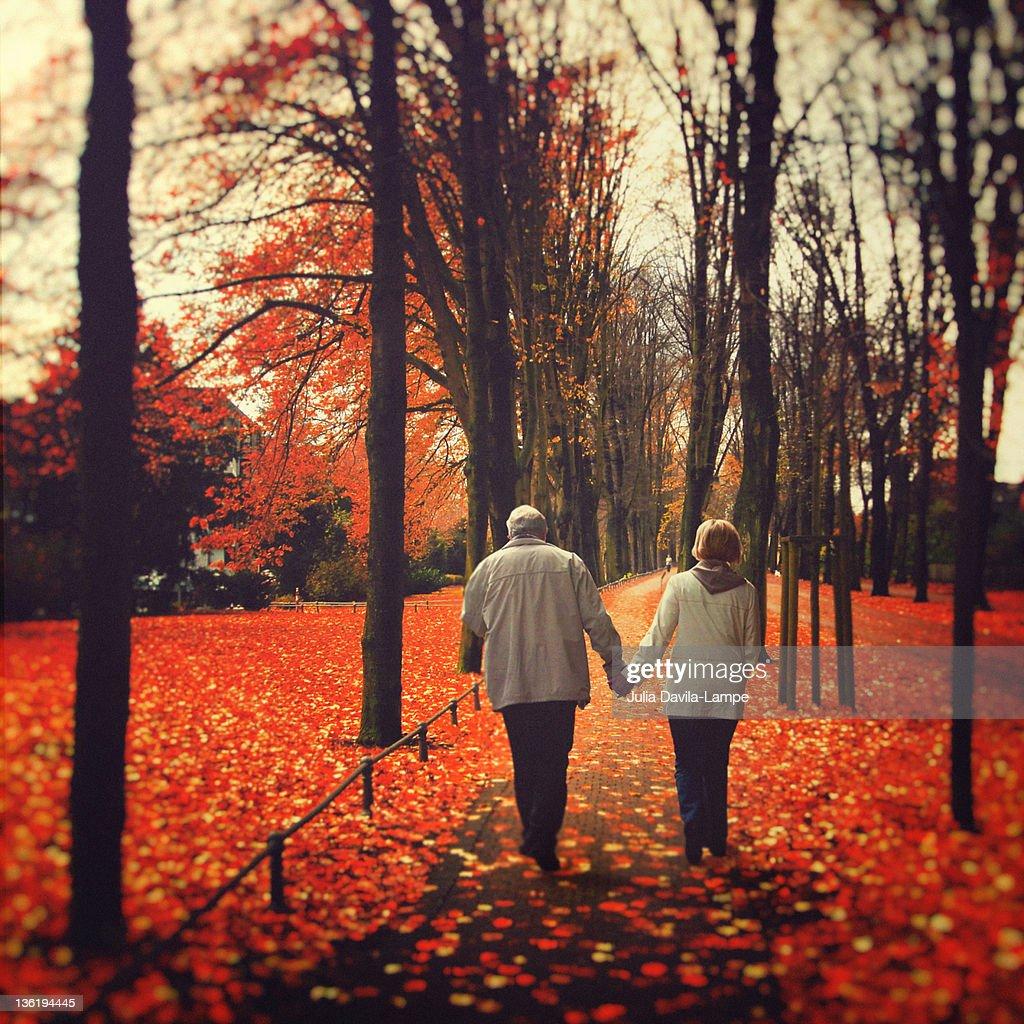 Mature couple walking in autumn woods : Stock Photo