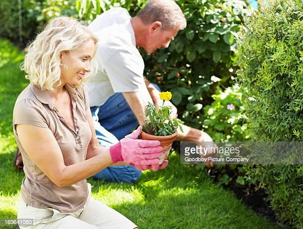 Mature couple travaillant dans leur jardin