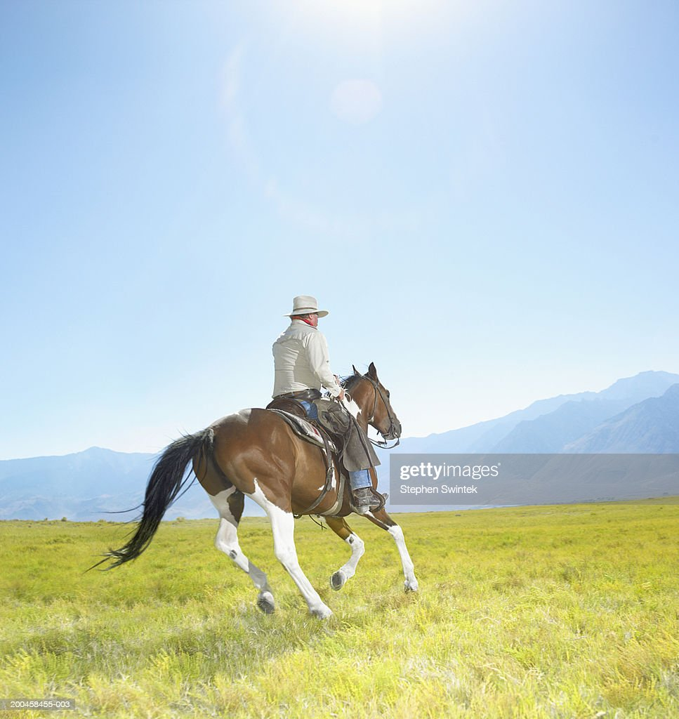 Mature cowboy riding Painted Mustang colt : Stock Photo
