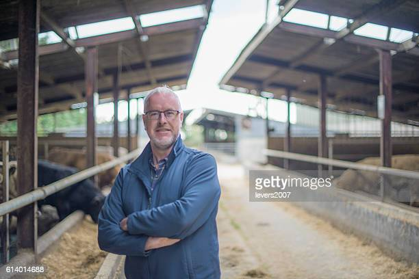 Mature farmer in cattle shed