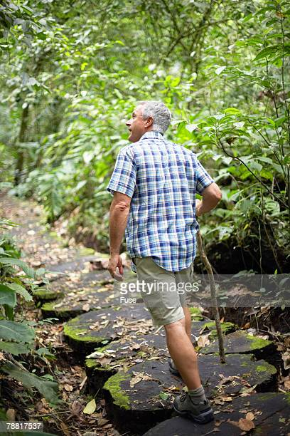 Mature Man Hiking in Wilderness Area